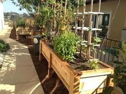 Garden Setup Ideas How To Set Up A Vegetable Garden Backyard Vegetable Garden Layout