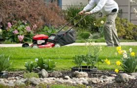 Landscaping Tyler Tx by Landscaping
