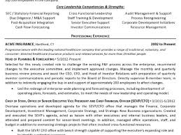 Cfo Resume Template 14 Resume Sample Controller Cfo Page 1 Professional Material