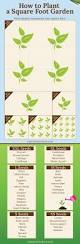 square foot square foot garden infographics jpg