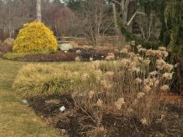 designing the winter garden
