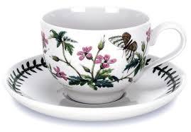 Portmeirion The Botanic Garden by Amazon Com Portmeirion Botanic Garden Tea Cup And Saucer Set Of