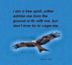 26 best free spirit quotes images on free spirit
