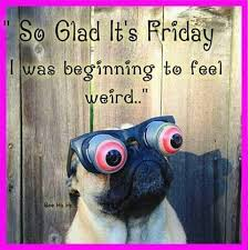 Happy Friday Memes - pin by sue marburger on pugs to love pinterest pug life