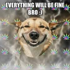 Everything Is Fine Meme - will be fine bro