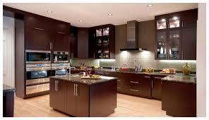Affordable Modern Kitchen Cabinets Modern Images Of Affordable Modern Kitchens Features Shape Kitchen