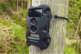 wildgame innovations lights out wildgame innovations terra 8 lightsout from best deer call