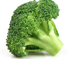 cuisiner brocolis comment cuisiner le brocoli autrement