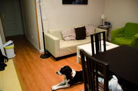 Dog Friendly Laminate Flooring Pet Friendly Madrid Parks And Vacation Rental The Road