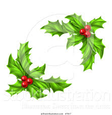 vector illustration of green holly leaves and christmas berries by