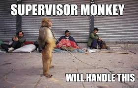 Funny Monkey Meme - superior monkey memes quickmeme