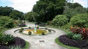 Botanic Garden Sydney The Royal Botanic Garden Sydney The Domain Aroundyou
