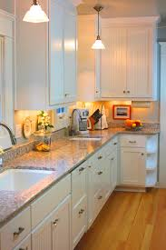 pvc kitchen cabinets pros and cons 70 white thermofoil kitchen cabinets kitchen shelf display ideas