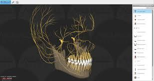 3d Medical Software 3d Anatomy Anomalousmedical Com