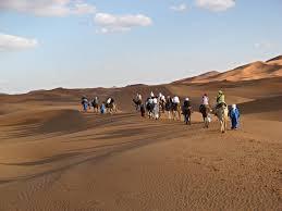 adventure holidays sahara desert trekking adventure rug u0026rock