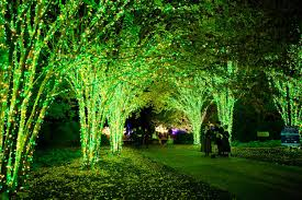 Botanical Gardens Christmas Lights by Holiday Lights At Cheekwood On The Christmas Trolley