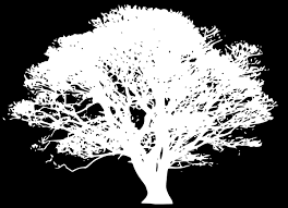 white tree silhouette on black clip at clker vector clip