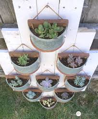 succulent planters from light fixtures my love 2 create