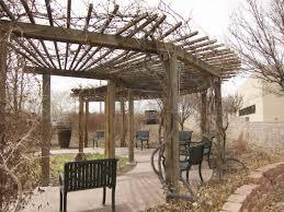 pergola design awesome best wood for outdoor pergola large