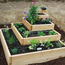 Garden Allotment Ideas Best Vegetables For A Raised Garden Best Vegetable Garden Layouts