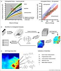 ion mobility mass spectrometry strategies for untargeted systems