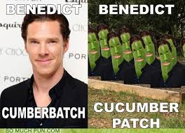 Organic Meme - his acting method is very organic puns pun pictures
