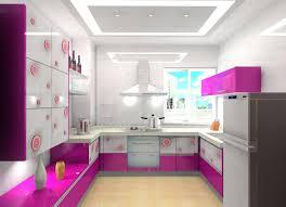 Purple Kitchen Cabinets by White Kitchen With Pink U0026 Purple Appliances Amazing Architecture