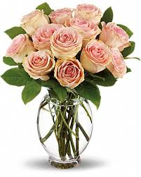 florist greenville nc roses delivery greenville nc jefferson florist inc