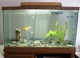Decorations Unusual Fish Tank Decorations With Wooden Frame And