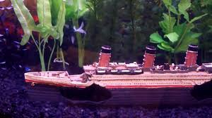 freshwater aquarium titanic ship fish tank