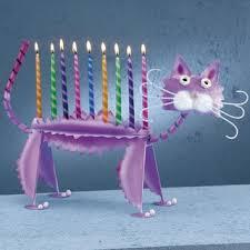 cat menorah cafleurebon celebrates chanukah we spell it hanukkah smell