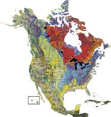 use this map to explore the history of life through geologic time