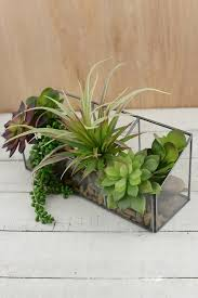 decoration glass terrarium containers u2013 outdoor decorations