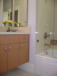 Upper Haight Project Contemporary Bathroom San Francisco - Kitchen cabinets san francisco