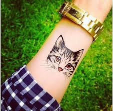 cutest cat on wrist ink and