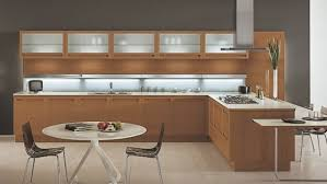 Modern Wooden Kitchen Designs Dark by Modern Dark Wood Kitchen Cabinets