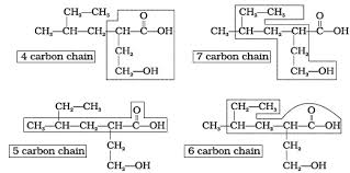 class 11 important questions for chemistry u2013 organic chemistry