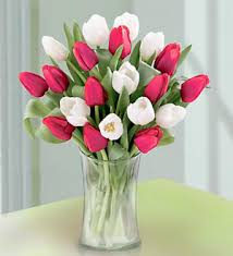 Flowers Delivered With Vase Red And White Tulips In A Vase Would Be A Really Pretty Bouquet
