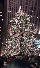 tree at rockefeller center picture of times square new york