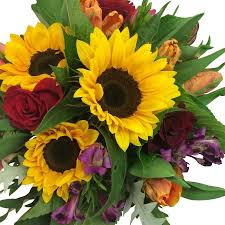Photos Of Flowers Flowers Delivery Upper Hutt Send Flowers By Florists Flower