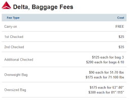 united baggage policy save your hard earned money on baggage charges airlinebaggagefee