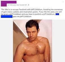Jeff Goldblum Meme - jeff goldblum entirely takes over facebook improves the world 100