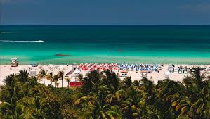 south beach hotels kimpton surfcomber hotel