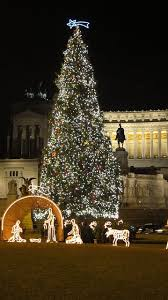 381 best christmas trees around the world images on pinterest