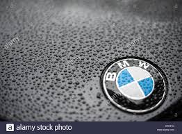 bmw vintage logo bmw logo at the hood stock photo royalty free image 10838412 alamy