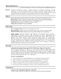 Professional Examples Of Resumes by Resume Example For It Professional