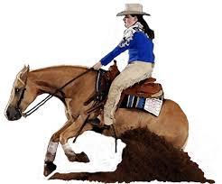 palomino quarter horse reining horse portrait