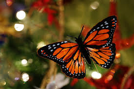 christmas 12 orange monarch butterfly ornament decorations floral