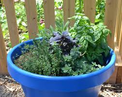 Herb Container Gardening Ideas Create A Water Wise Herb Container Garden Water Use It Wisely