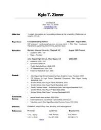 Resume Objective Statement - job resume objective statement musiccityspiritsandcocktail com